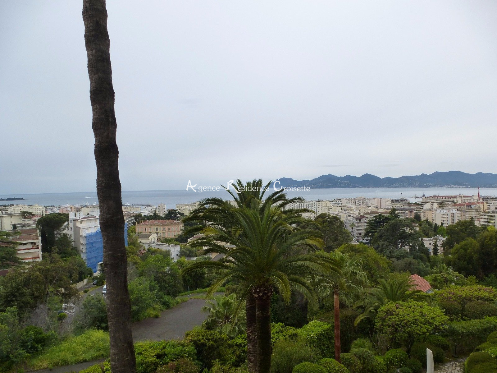 Image_1, Appartement, Cannes, ref :3864