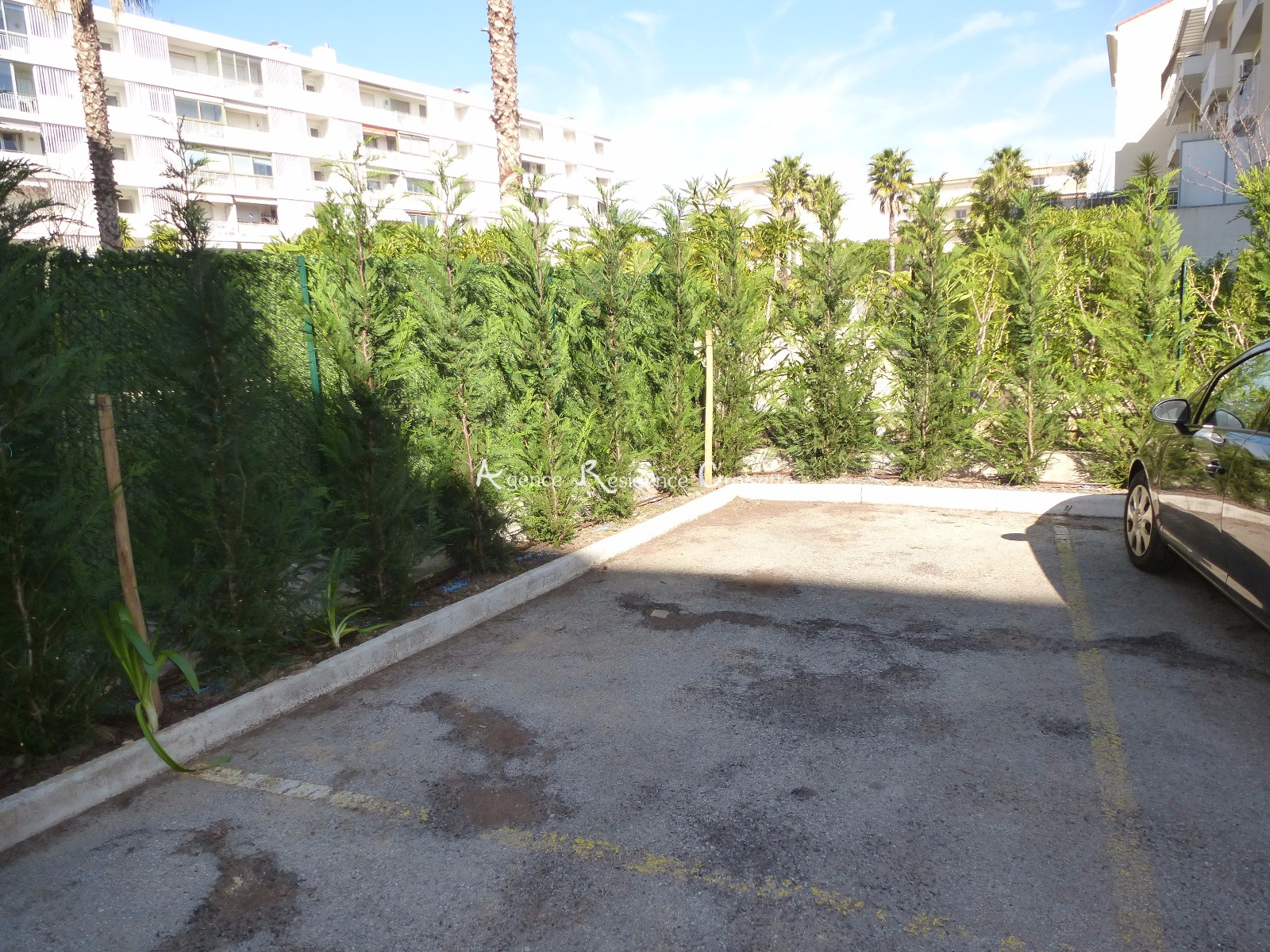 Image_6, Appartement, Cannes, ref :3836